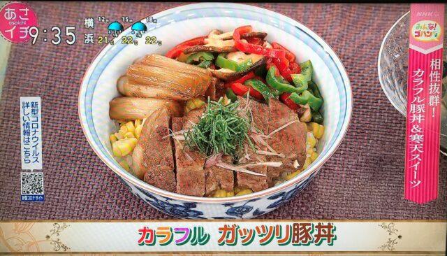 カラフル ガッツリ豚丼